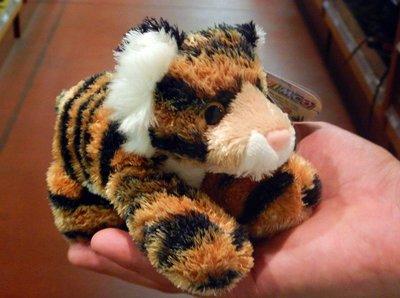 baby_tiger.jpg