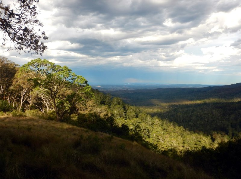 large_Pine_Gorge_Lookout.jpg