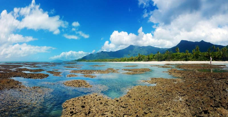 large_Reef_to_Ra..Tribulation.jpg