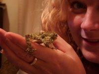Leaf-tailed gecko Charlotte2