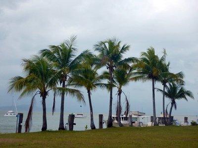 windy_Port_Douglas.jpg