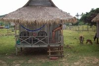 our hut on bamboo island