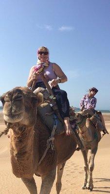 Camel_-_both.jpg