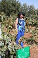 Winery_Meggie.jpg