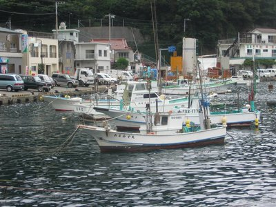Nera, Izu peninsula, harbour