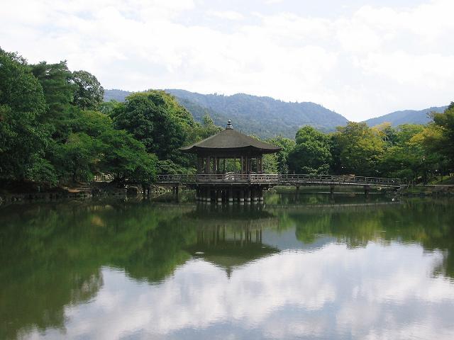 Nara - Island lake in Nara