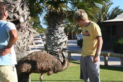 australia_578.jpg