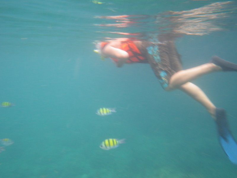 Stacey snorkelling