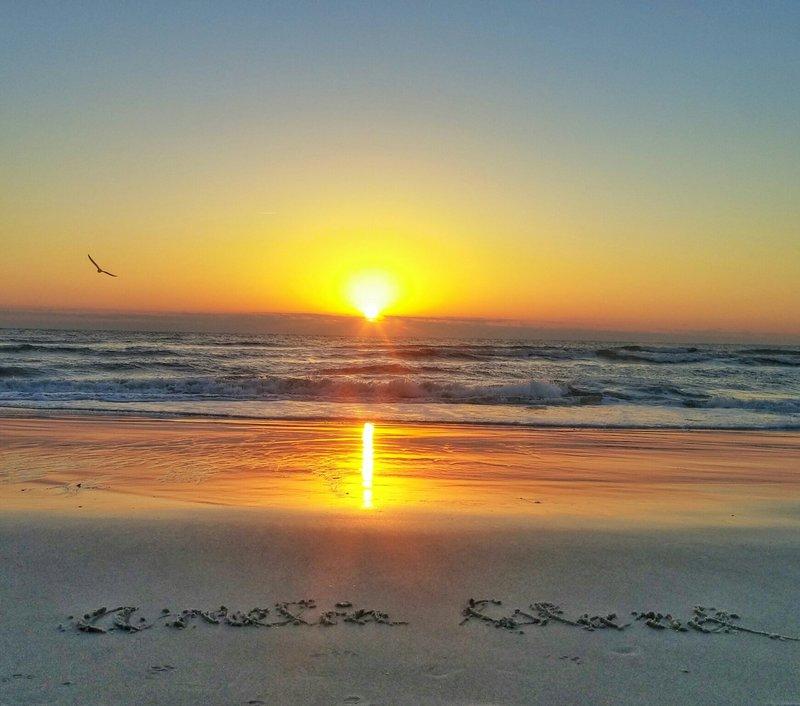 sunrisebirdamelia