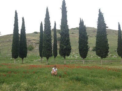 Images from our walk around the ancient city Hierapolis