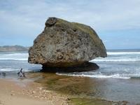 Reef rock