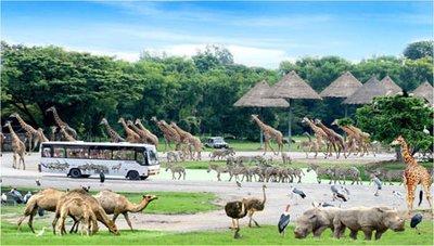 safari_world.jpg