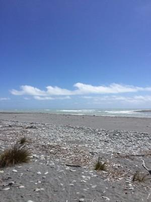 90_okarito-beach-south-island-new-zealand_49920252352_o.jpg