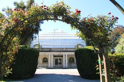 christchurch-botanical-gardens_49920150743_o.jpg