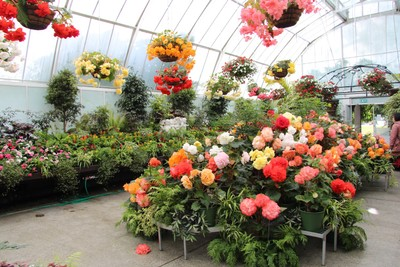 christchurch-botanical-gardens_49920181923_o.jpg