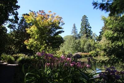 christchurch-botanical-gardens_49920657936_o.jpg