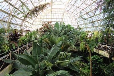 christchurch-botanical-gardens_49921000632_o.jpg