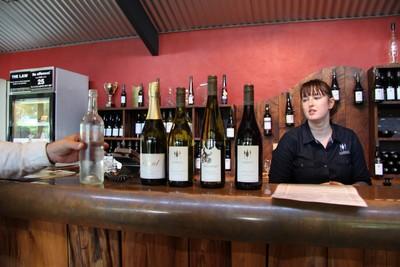 forrest-estate-wines-blenheim-wine-tour_49919651007_o.jpg