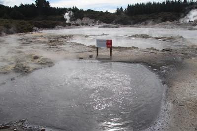 hells-gate-rotorua_49919347562_o.jpg