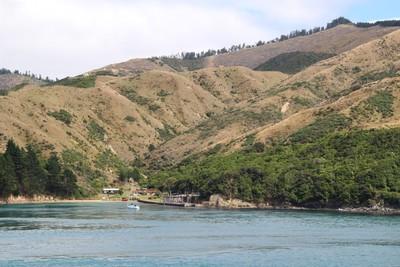 interisland-ferry-north-south-island-new-zealand_49918835353_o.jpg