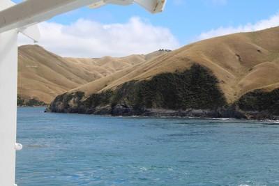 interisland-ferry-north-south-island-new-zealand_49918836713_o.jpg