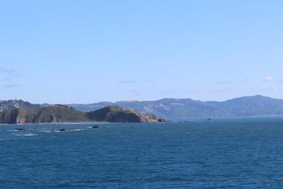interisland-ferry-north-south-island-new-zealand_49918855018_o.jpg