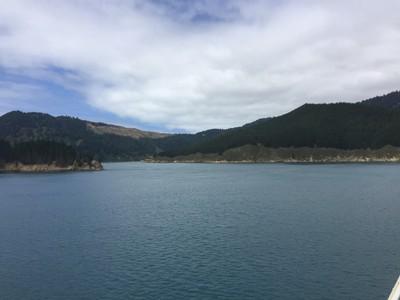 interisland-ferry-north-south-island-new-zealand_49918856753_o.jpg