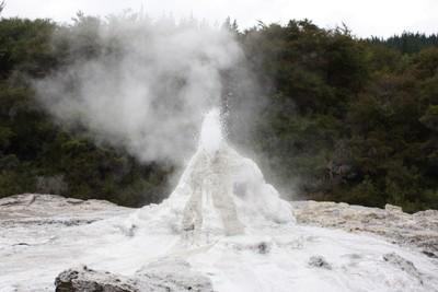 lady-knox-geyser-wai-o-tapu-rotorua_49919439897_o.jpg