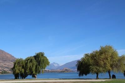 lake-wanaka_49919899068_o.jpg