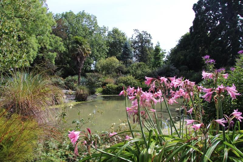 large_christchurch-botanical-gardens_49920174218_o.jpg