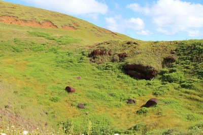 puna-pau-quarry-easter-island_32407001574_o.jpg