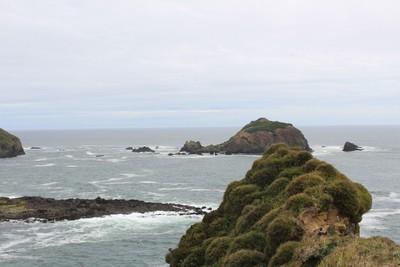 punihuil-islands_34343993552_o.jpg