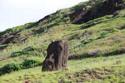 rano-raraku-moai-quarry-easter-island_33095371892_o.jpg