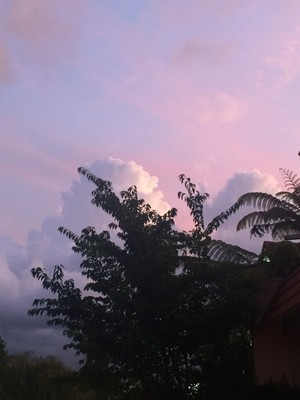 rotorua-sunset_49919514467_o.jpg