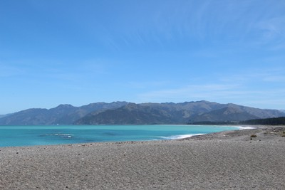 south-bay-kaikoura_49919397181_o.jpg