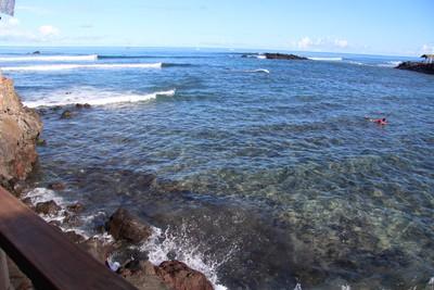 turtles-pea-beach-hanga-roa-easter-island_33599840656_o.jpg