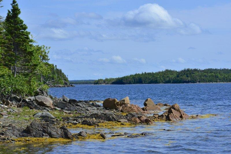 shoreline of out campsite