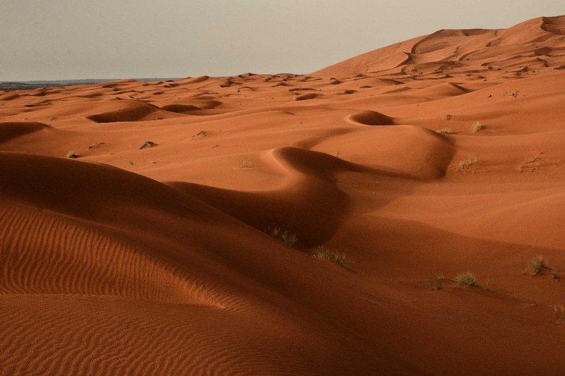Serpentine Sands