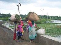 Narmada river flooded area