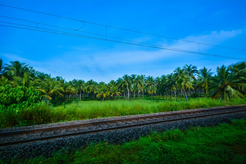 View from Indian Train