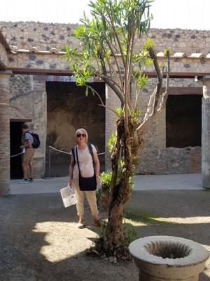House courtyard Pompei