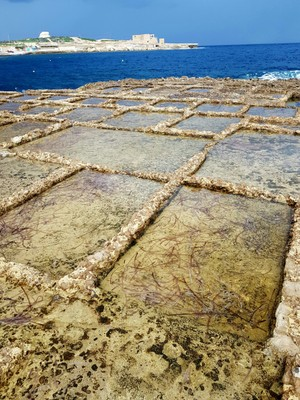 G - salt pans Gozo