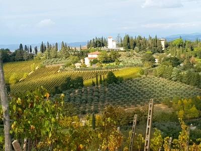 Tuscan panorama2