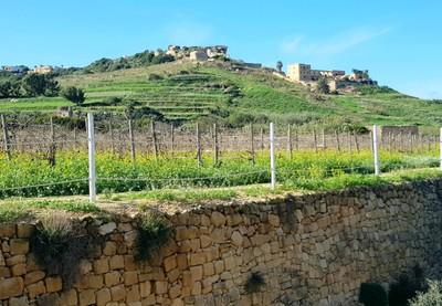 G- stone wall Gozo