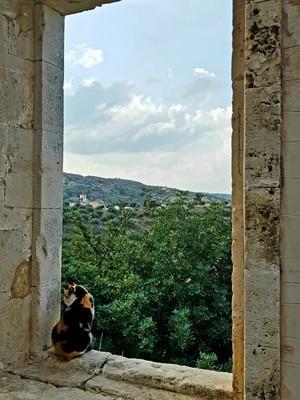 C - monastery window view