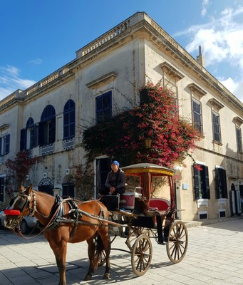 M - horse and carriage Mdina