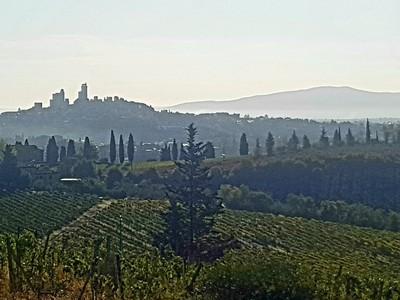 Morning view San Gimignano