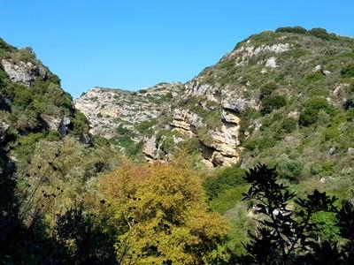 C-Myrtia gorge3