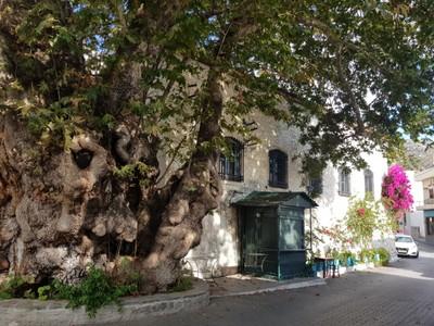 C-Viannos village