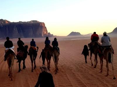 J- Wadi Rum group camel ride